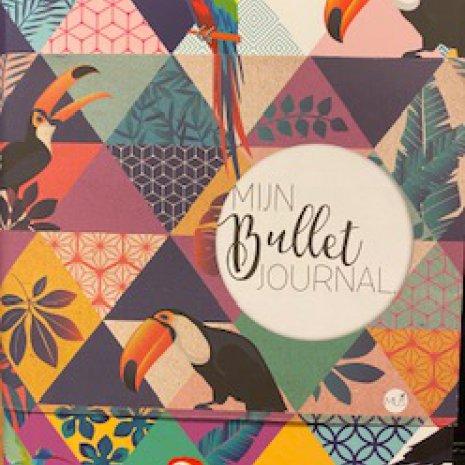 Bullet Journal 01