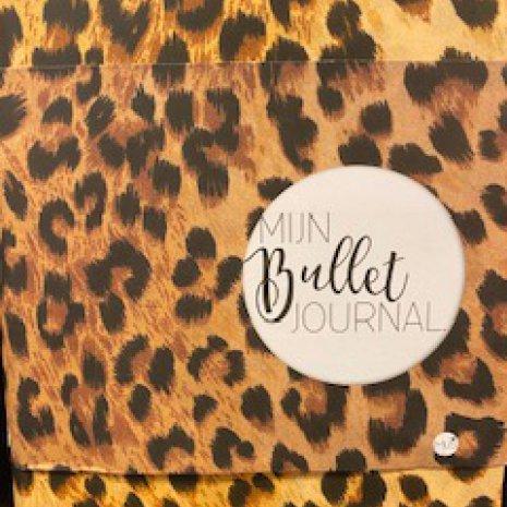 Bullet Journal 09